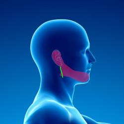 Douleurs chroniques après chirurgie de la parotide
