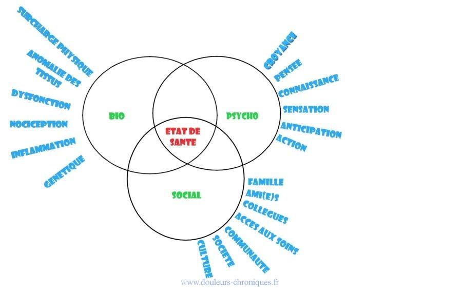 Le modèle biopsychosocial. Expliquer la douleur chronique