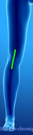 Chirurgie du genou (prothèse, arthroscopie, etc...)